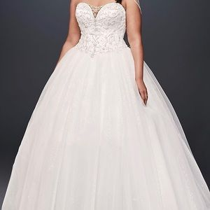 Brand New, never worn David's Bridal dress!